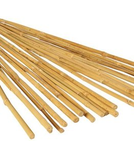 GROW!T GROW!T 8' Bamboo Stakes, EACH