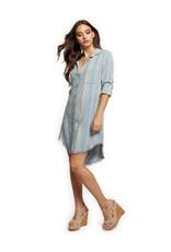 Dex Tess Striped Shirt Dress