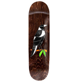 Passport Passport Deck Stain Glass Callum Paul Maggie (8.125)