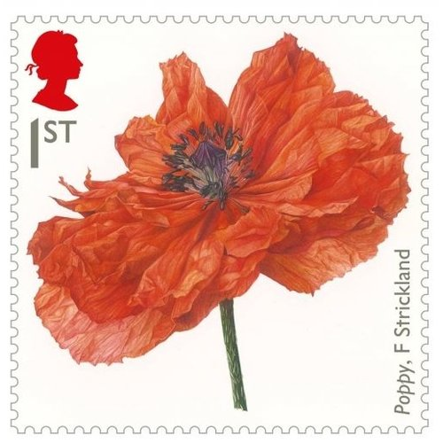 Imperial War Museums Poppy Stamp Fridge Magnet