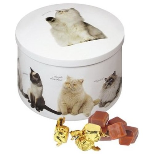 Gardiners of Scotland Gardiners Cat Vanilla Fudge Round 200g