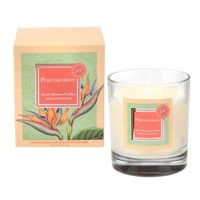 Exotic Botanic Garden Birds of Paradise Candle