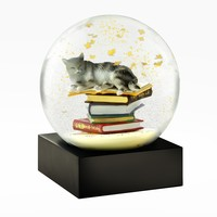 Cool SnowGlobes Cat On Books