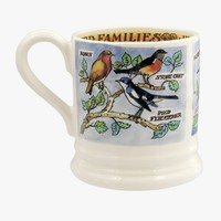 Bird Families Insect Eaters 1/2 Pint Mug