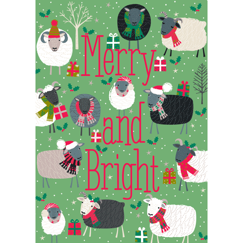 Caspari Merry and Bright Boxed Christmas Cards