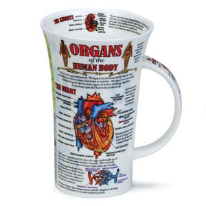 Dunoon Dunoon Glencoe Organs of the Human Body Mug