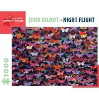 John Dilnot Night Flight Puzzle