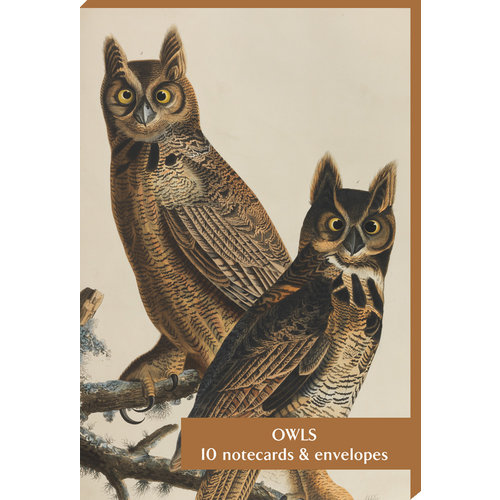 Audubon Owls Cards and Envelopes