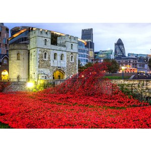 Wentworth Wooden Puzzles Wentworth Wooden Puzzle Tower of London Remembrance 500 Pieces