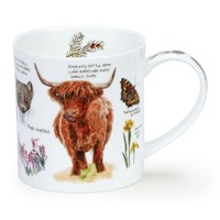Orkney Scottish Notebook Highland Cow Mug