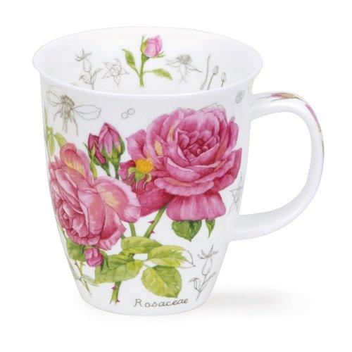 Dunoon Dunoon Nevis Floral Sketch Rose Mug