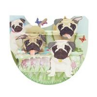 Popnrock Pugs Card