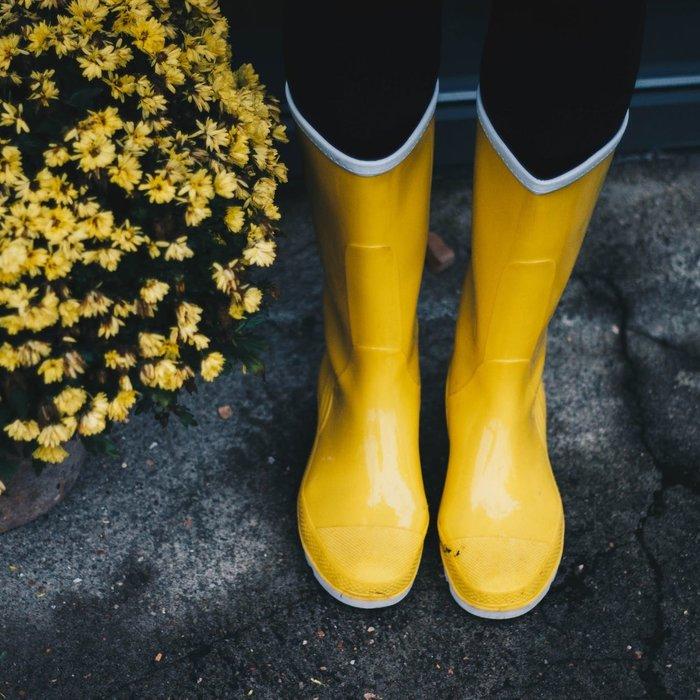 Wellies (Rain Boots)