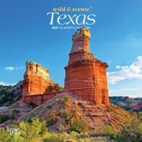 BrownTrout Publishers Texas Wild and Scenic 2021 16 Month Mini Calendar