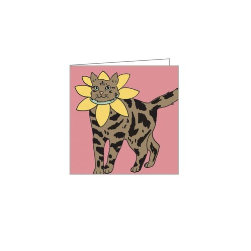 Fancy Dress Cats Boxed Notecards