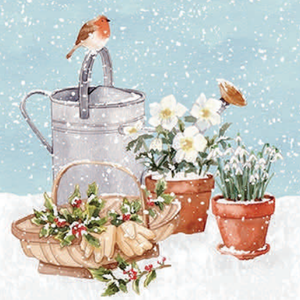 Robin & Watering Can Christmas Cards