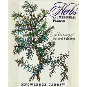 Herbs and Medicinal Plants Knowledge Cards
