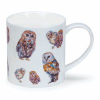 Orkney Country Life Owl