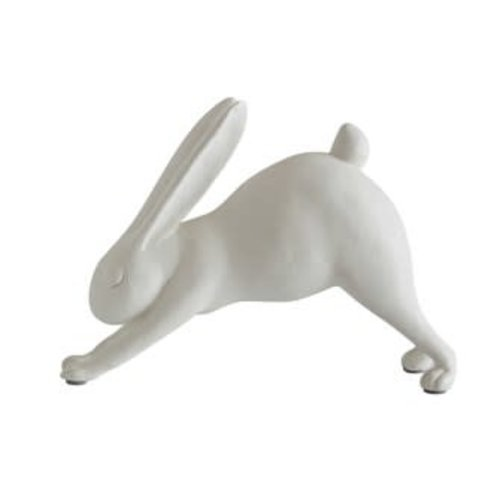 Downward Dog Yoga Rabbit