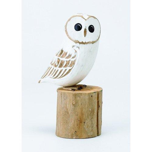Aviologie Aviologie Large White Owl