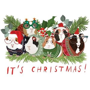 Guinea Pigs In Christmas Sweaters Card