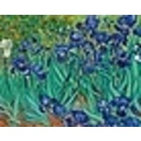 Vincent Van Gogh Keepsake Boxed Cards