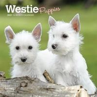 Westie Puppies 2022 Mini Calendar