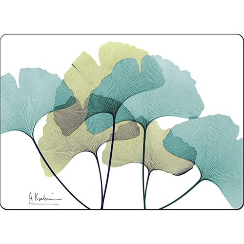 Ginko 4 pack placemats