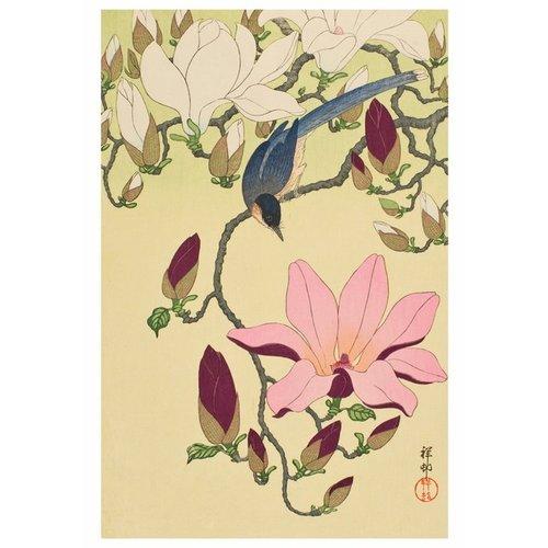 Pomegranate Ohara Shoson Boxed Notecards