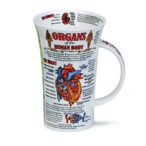Dunoon Glencoe Organs of the Human Body Mug