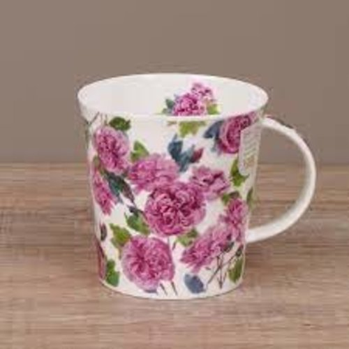 Dunoon Cairngorm Cottage blooms - Rose