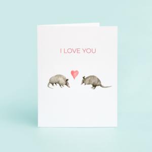 Armadillo Valentine Blank Greeting Card