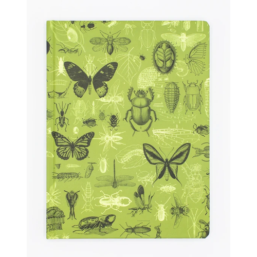 Notebook: Hypothesis Insects Plate 3