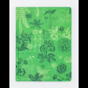 Botany Plate 2 Notebook