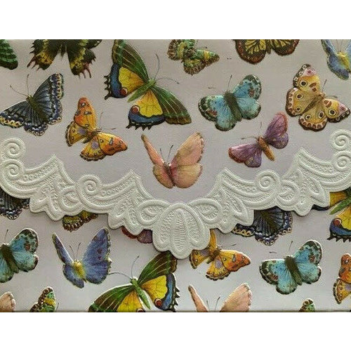 Butterflies Boxed Portfolio of 10 Notecards