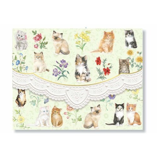 Kitten Blank Portfolio of 10 Notecards