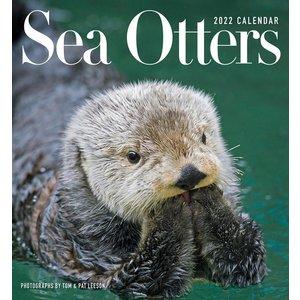 Pomegranate Sea Otters 2022 Wall Calendar