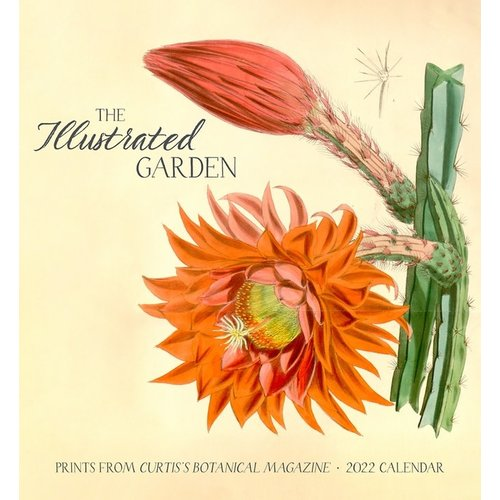 Pomegranate The Illustrated Garden  2022 Wall Calendar