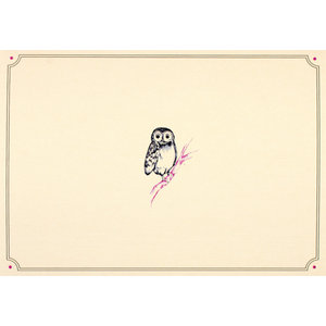 Owl Portrait Notecards
