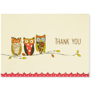 Perching Owl Thank You Notecards
