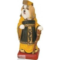 Harrop's Gold and White Shih Tzu Chinese Emperor