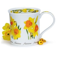 Dunoon Bute Spring Flowers Narcissus Mug
