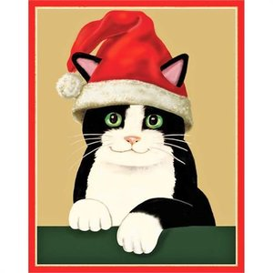 Caspari Caspari Christmas Cards - Cat with Santa Hat