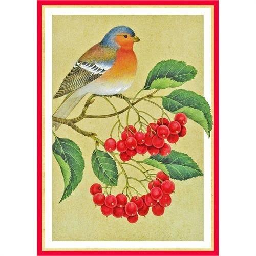 Caspari Caspari Christmas Cards - Bird and Berries