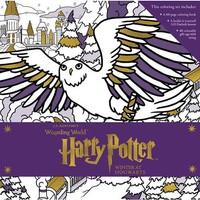 Harry Potter Winter at Hogwarts Coloring Set