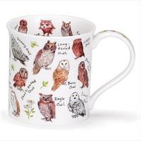 Dunoon Bute Birdlife Garden Owls Mug