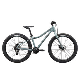 Giant 2020 Giant XTC Jr 26+