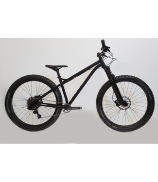 2016 NS bike Eccentric - Custom Build - Small
