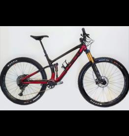 2020 Trek Fuel EX 29 carbon - Custom Build - Large