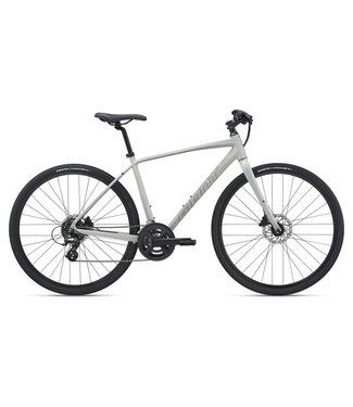 Giant 2021 Giant Escape 2 Disc